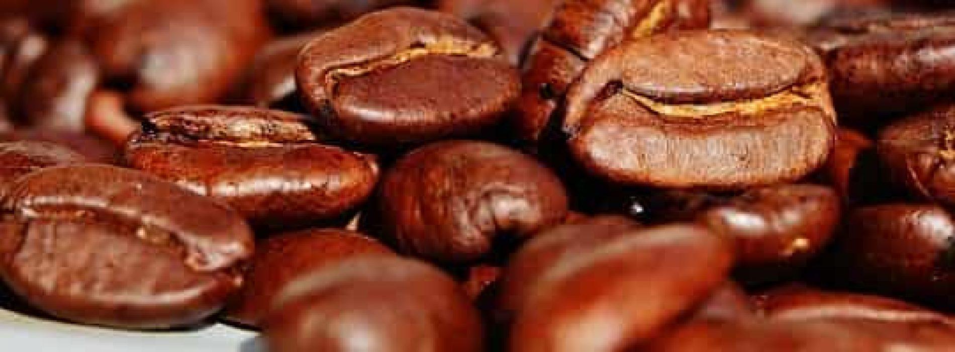 Kaffetrakter – Test og kjøpeguide (2020)