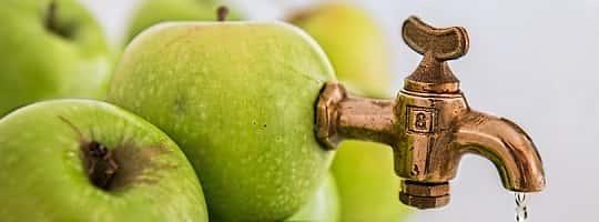 Ny slow juicer / juicepresser? Her er tre testvinnere (2020)
